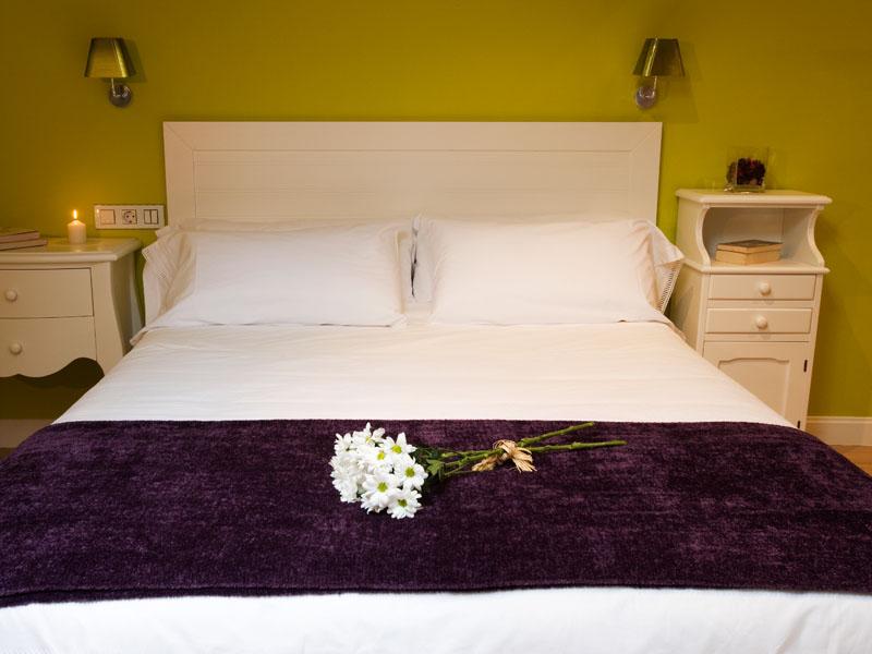habitaciones dobles especiales hotel encanto la rioja 1